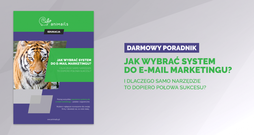 Jak wybrać system do e-mail marketingu?
